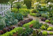 Красивый огород и сад ландшафтный дизайн — карточка от