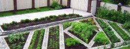 Ландшафтный дизайн огорода своими руками: оформление и планировка