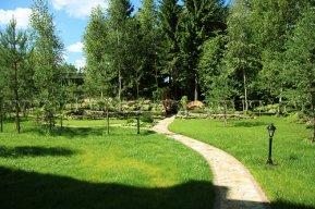 Лесной стиль ландшафтного дизайна - Ваша Дача