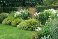 Растения для ландшафтного дизайна выбор растений
